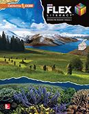 FLEX Literacy Interactive Reader cover, Secondary